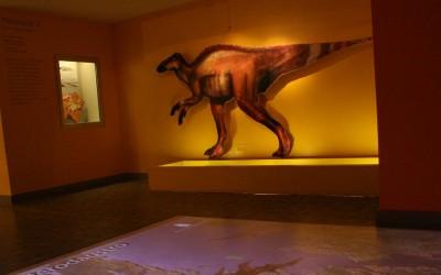 Museología-UNT Luis Ferrando