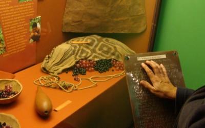 Museo de Arqueología-web
