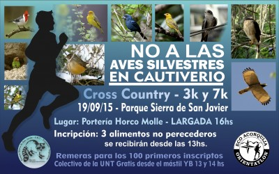 Poster carrera aves2 (1)