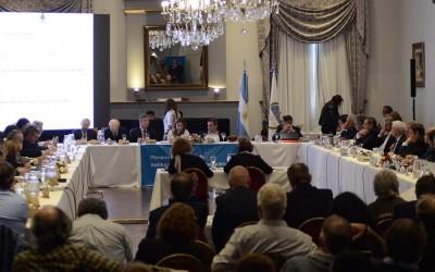 Cin plenario - foto CIN