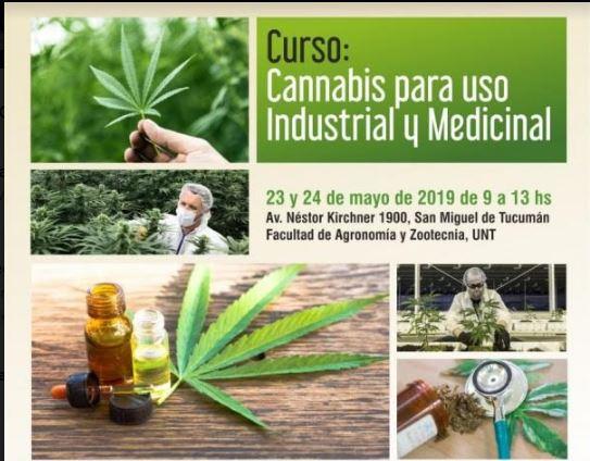curso cannabis 2